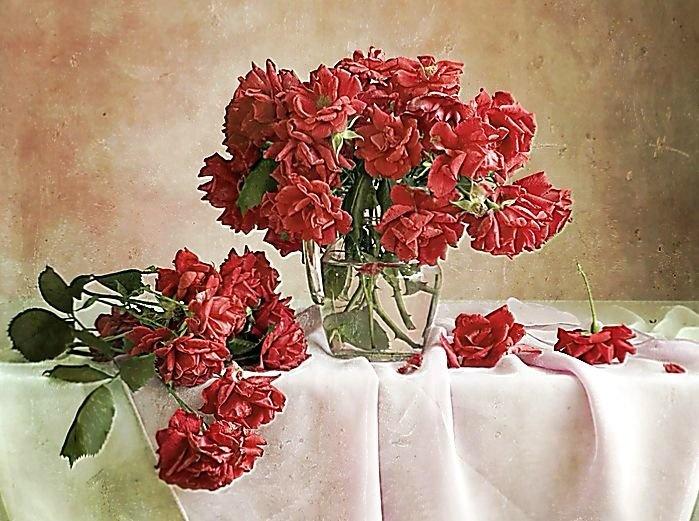 Розы купить во владивостоке