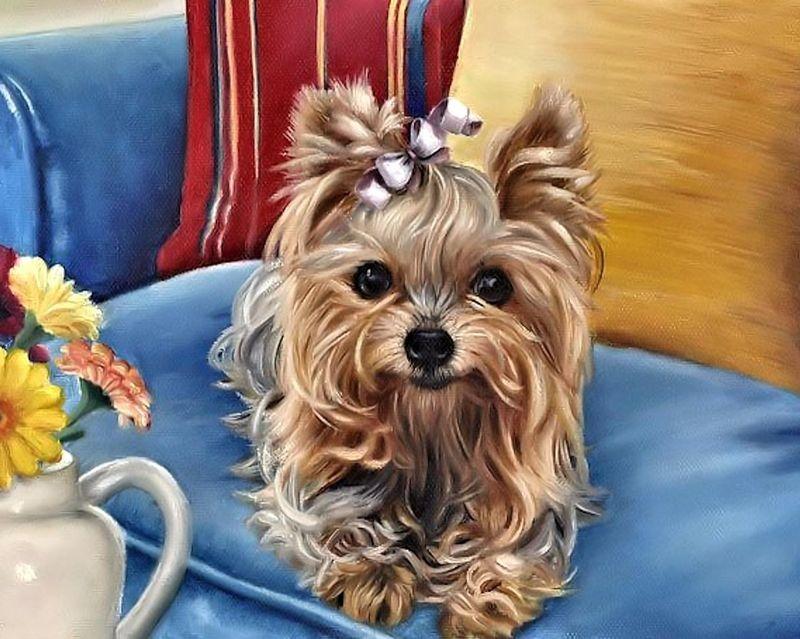 Купить Картины по номерам 40х50 «Собачка с бантиком» по ...